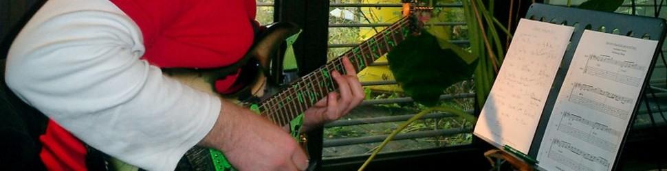 Einzel- und Gruppenunterricht: Wochenendworkshops, Vorbereitungsunterricht und Live-Playing Workshops Wolfgang Abeska Gitarrist Musiker
